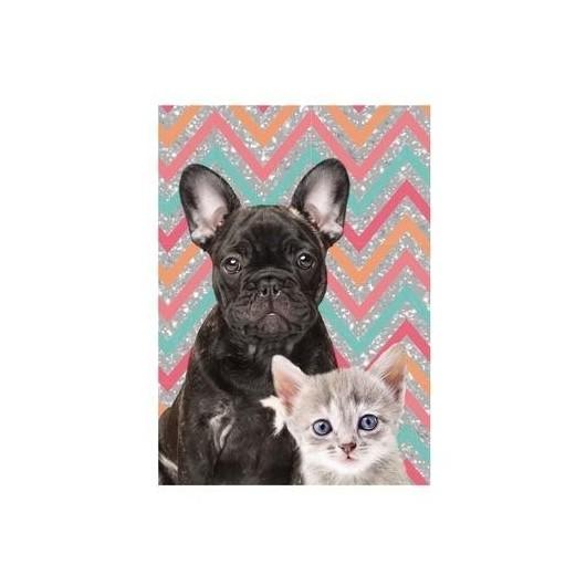 Pamiętnik Dog & Cat błyszczący