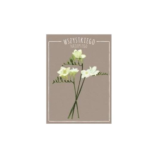 Karnet B6 Kwiaty akwarela. Frezja