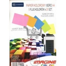 Papier ksero A4/100 5 kolorów Fluo x 20K