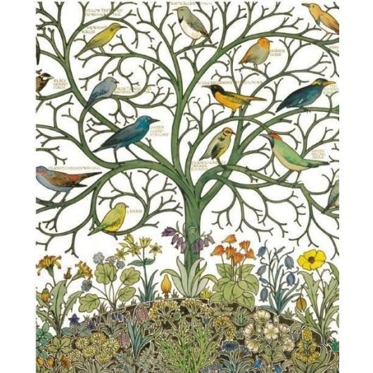 Karnet 17x14 z kopertą Birds of Many Climes textil
