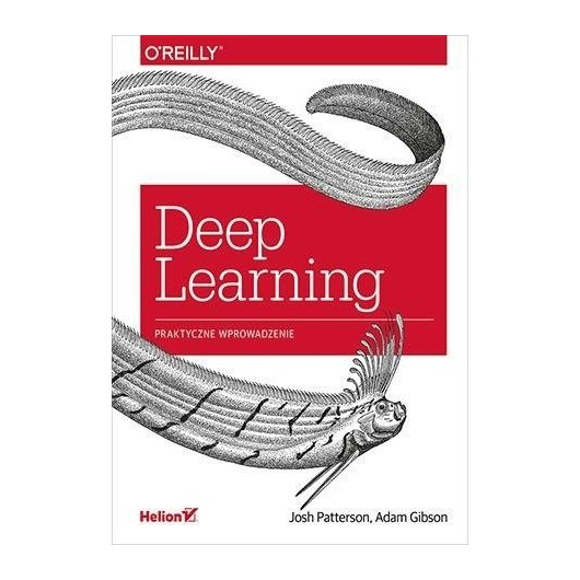 Deep Learning. Praktyczne wprowadzenie