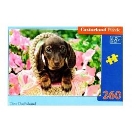 Puzzle 260 Cute Dachshund CASTOR