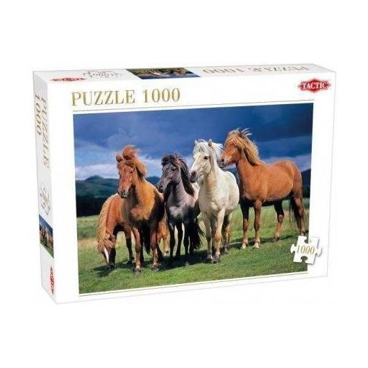 Puzzle 1000 Camargue horses