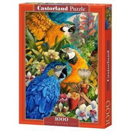 Puzzle 1000 Amazonka CASTOR