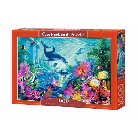 Puzzle 1000 Wczesne poszukiwania CASTOR