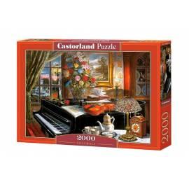 Puzzle 2000 Ensemble CASTOR