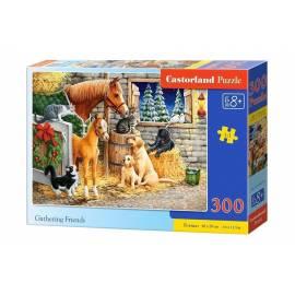 Puzzle 300 Gathering Friends CASTOR