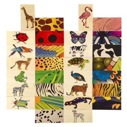 Zwierzęta i ich ubrania