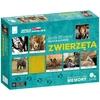 Gra edukacyjna memory - Zwierzęta Jacek Bonecki