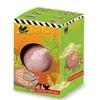 Dino jajo wykopaliska