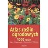 Atlas roślin ogrodowych. 1000 roślin