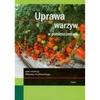 Uprawa warzyw w pomieszczeniach