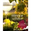 Winnice w Polsce