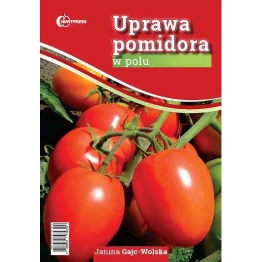 Uprawa pomidora w polu HORTPRESS