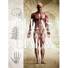 Atlas budowy ludzkiego ciała