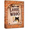 Lassie, wróć! Kolor BR Greg