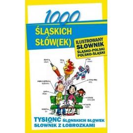 1000 śląskich słów(ek). Ilustrowany słownik